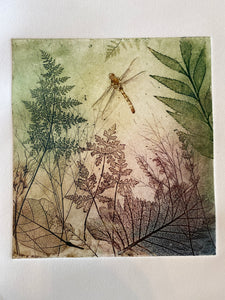 """ Byfield Fern"" - Original Etching"