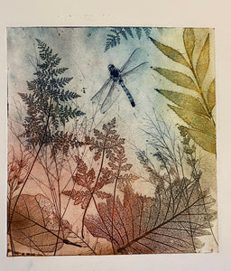 """Byfield Fern"" Original Etching"