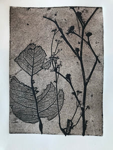 Nature Etching #11