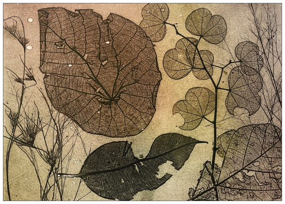 Leaf Inspired Postcard