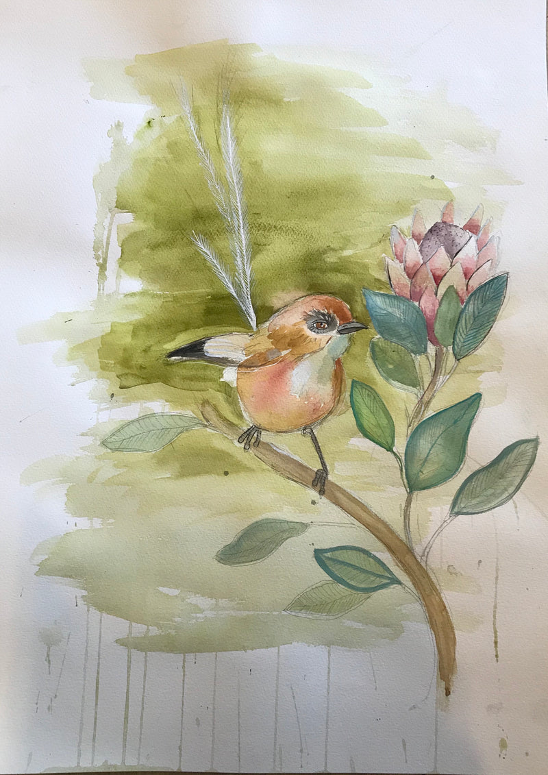 """Protea Wren"" original artwork"