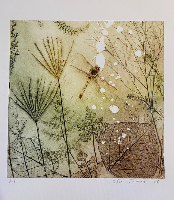 """Rustic Dragonfly"" Original Etching"
