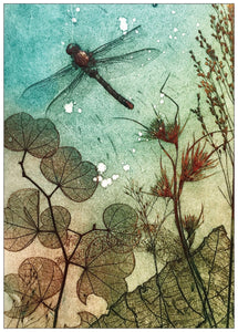 Water Dragonfly Postcard
