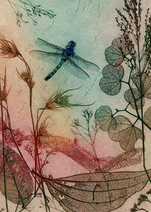 Warm Dragonfly Fine Art Print