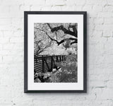 Winter Bridge Zion Utah Framed Photo Wall Art