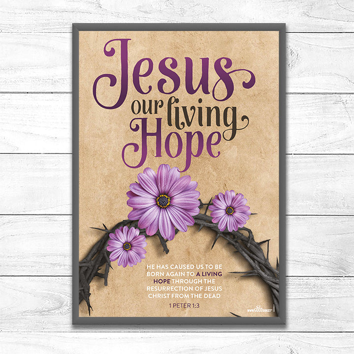 Jesus <p> Our Living Hope