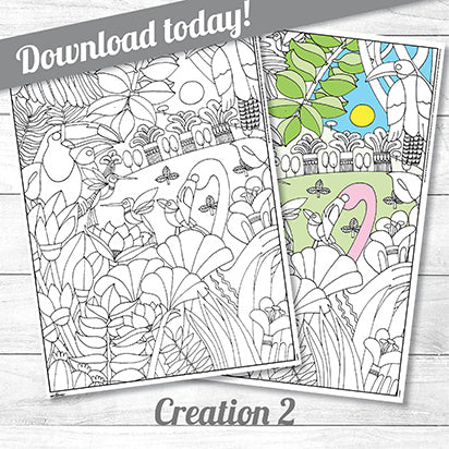 Creation Two<p>colouring poster