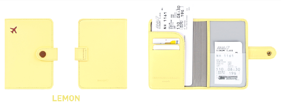 Mini Journey No Skimming Passport Case