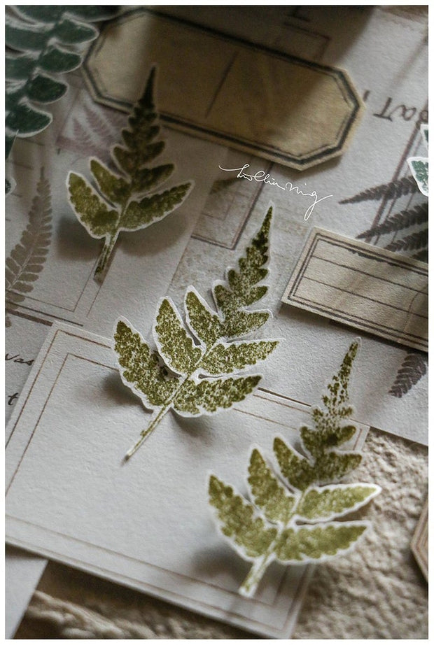 LCN Fern Specimen Stamp Set