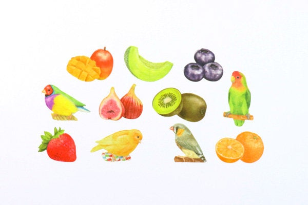 BDA300 Birds&Fruits WASHI STICKERS