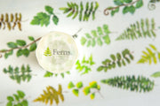 OURS Ferns Washi Tape