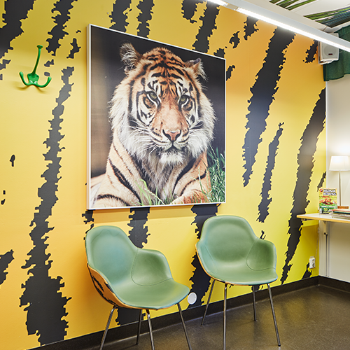 Image of tiger on acoustic panel in a waiting room