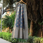 Grey Shade Meenakari Banarasi Silk Dupatta With Zari Border - shoonya banaras