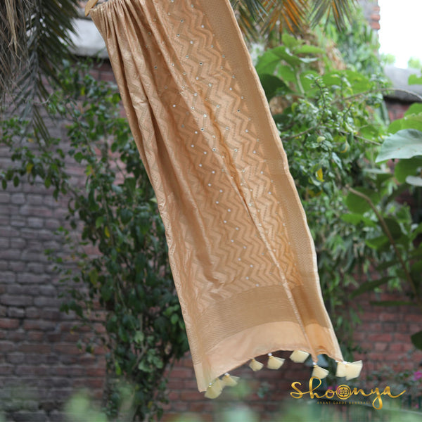 Chiku Color Banarasi Silk Dupatta With Mirror Highlights - shoonya banaras