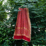 Bloody Red Barfi Weaves Pure Georgette Bandhej Banarasi Dupatta With Golden Border Work - shoonya banaras
