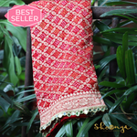 Coral Red & Pink Pure Georgette Bhuj Bandhej Banarasi Saree With Mirror Border Details - shoonya banaras