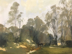 Patches of sunlight, Barcombe