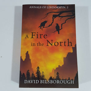 A Fire in the North (Annals Of Lindormyn) by David Bilsborough