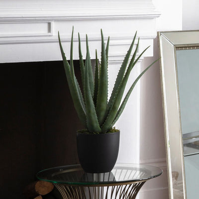 Gallery Faux Aloe-GalleryDirect-Olivia's