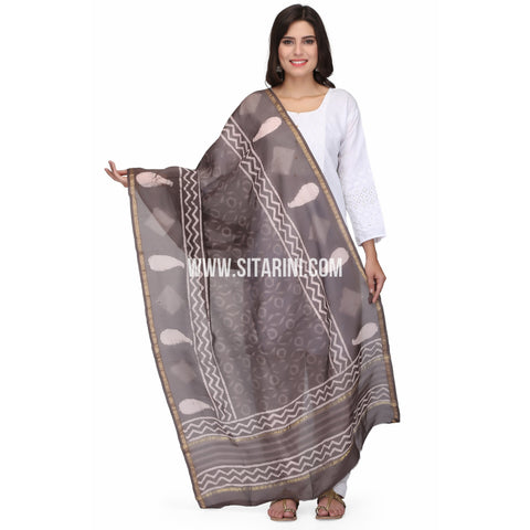 Chaderi Silk Cotton Dupattas-Brown-Sitarini-LWTSCD121