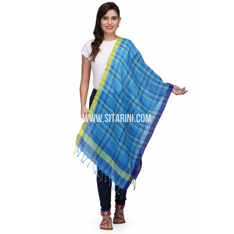 Handloom Linen Dupattas With Checks-Blue-Sitarini-LWTLD137
