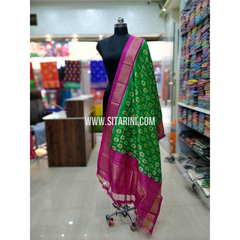 Ikkat Pattu Dupatta-Green and Pink-Sitarini-SITIPD139
