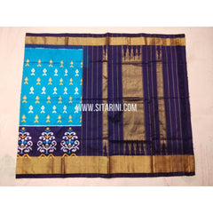 Pochampally Silk Saree-Light Blue and Navy Blue-Sitarini-PVHIPS126