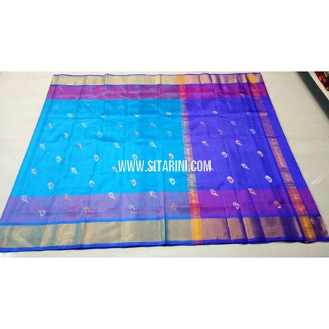 Uppada Pattu Saree with Jamdani Buta-Sky Blue and Blue-Sitarini-USRHUPS176