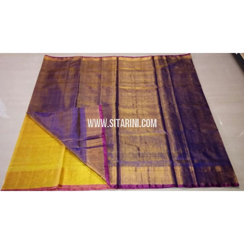 Uppada Tissue to Pattu Combination Saree with Pattu Border-Sitarini-USRHUPS188