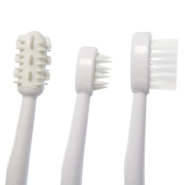 Dreambaby Toothbrush Set 3 Stage
