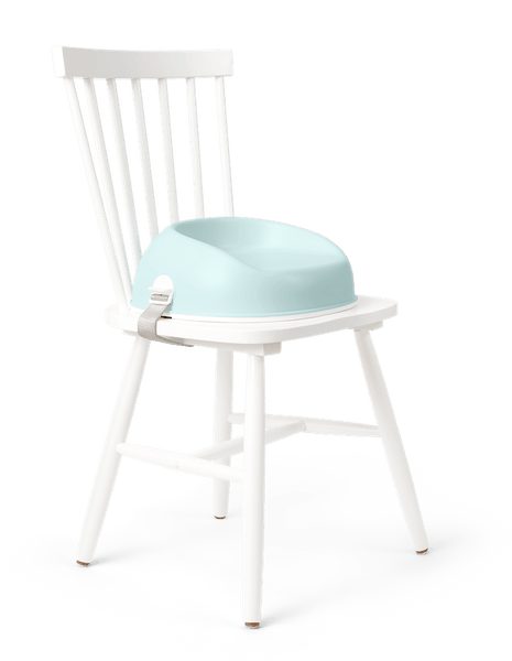 BabyBjorn Booster Seat