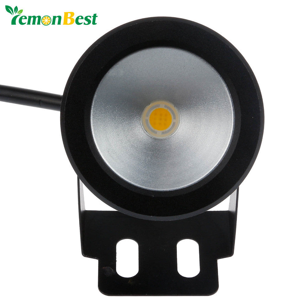 10W Dc12V Underwater Led Light Pool Led Cool White Warm White Underwater Pool Lamp For Fountain Lighting
