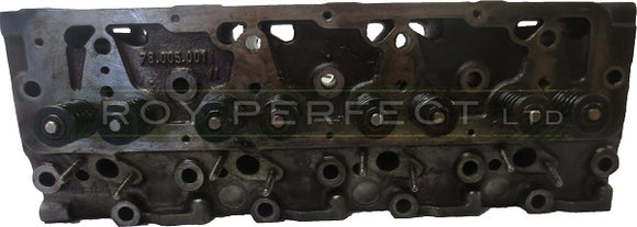 Reconditioned Cylinder Head c/w Valves - Roy Perfect LTD