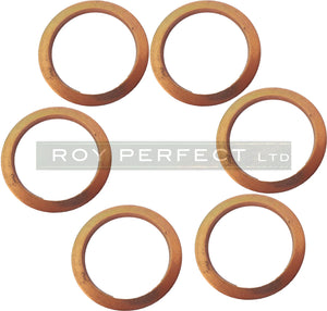 Copper Washer Set of 6 (24x30x2) - Roy Perfect LTD