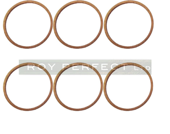 Copper Washer Set of 6 (25x28x1.5) - Roy Perfect LTD