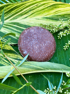 Moroccan Oil Shampoo Bar