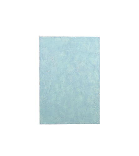 Md Light Blue With Mint Green Textured Plaster Accents