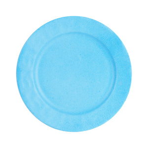 Md Bright Blue Plate With Speckles