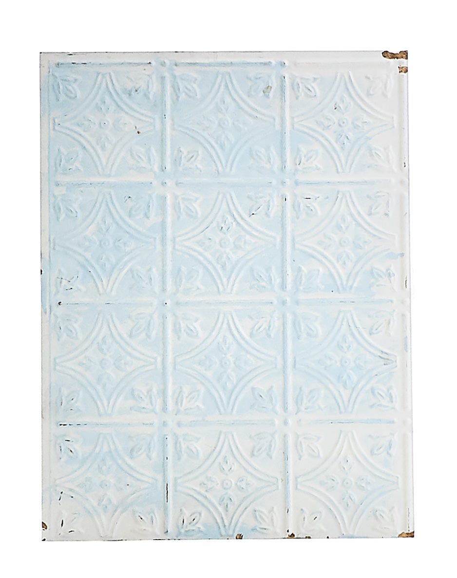 Sm White/Blue Plastic Panel