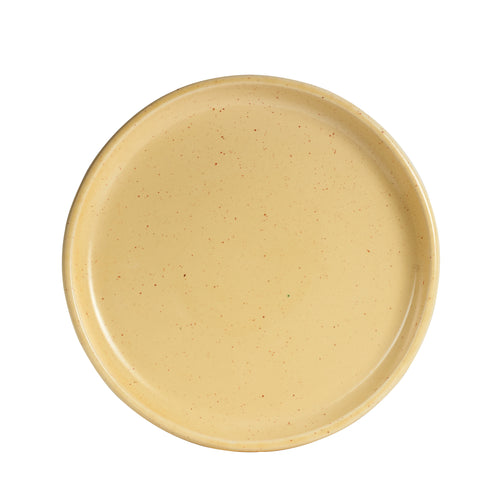 Lg Light Speckled Shallow Plate