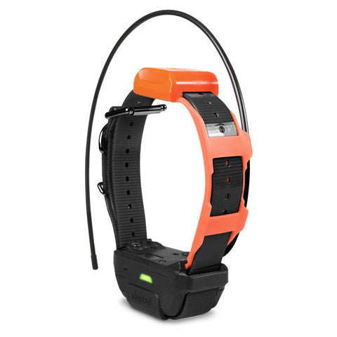 Dogtra Pathfinder TRX Additional GPS Collar - Carolina Sportsman Outfitters