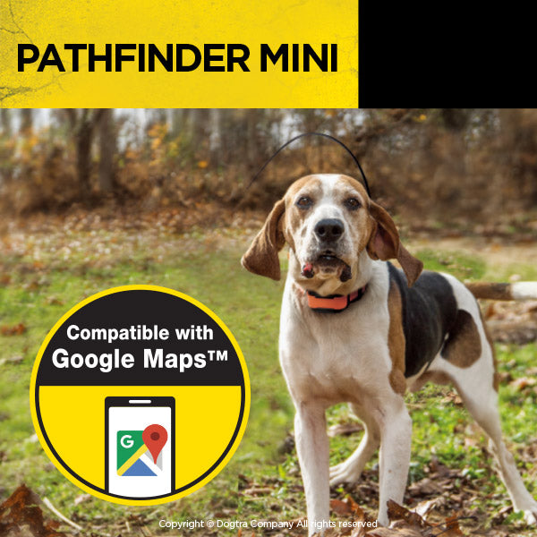Dogtra Pathfinder Mini Bundle - Carolina Sportsman Outfitters
