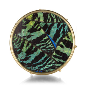 Lilly Fitzgerald Green Butterfly Wing Pin | Quadrum Gallery