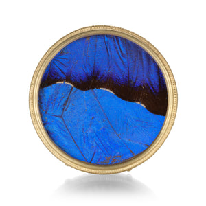 Lilly Fitzgerald Large Blue Morpho Butterfly Pin | Quadrum Gallery