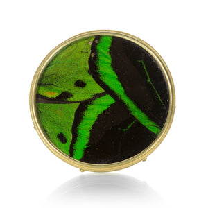 Lilly Fitzgerald Large Green Butterfly Pin | Quadrum Gallery