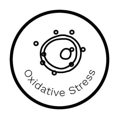 Oxidative Stress Report