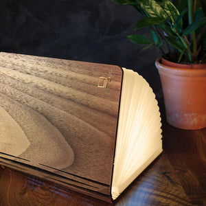 Book Light - Mini