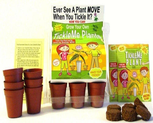 TickleMe Plant Greenhouse garden kit with science activity card! - This fun grow kit includes everything you need to start growing TickleMe Plants at home.