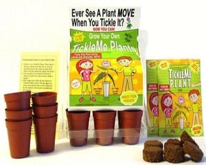 TickleMe Plant Greenhouse garden kit with science activity card! - TickleMe Plant Company, Inc