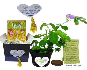 "Say -So Tickled to Share this Graduation Gift With You"" -TickleMe Plant Graduation Gift Box set."